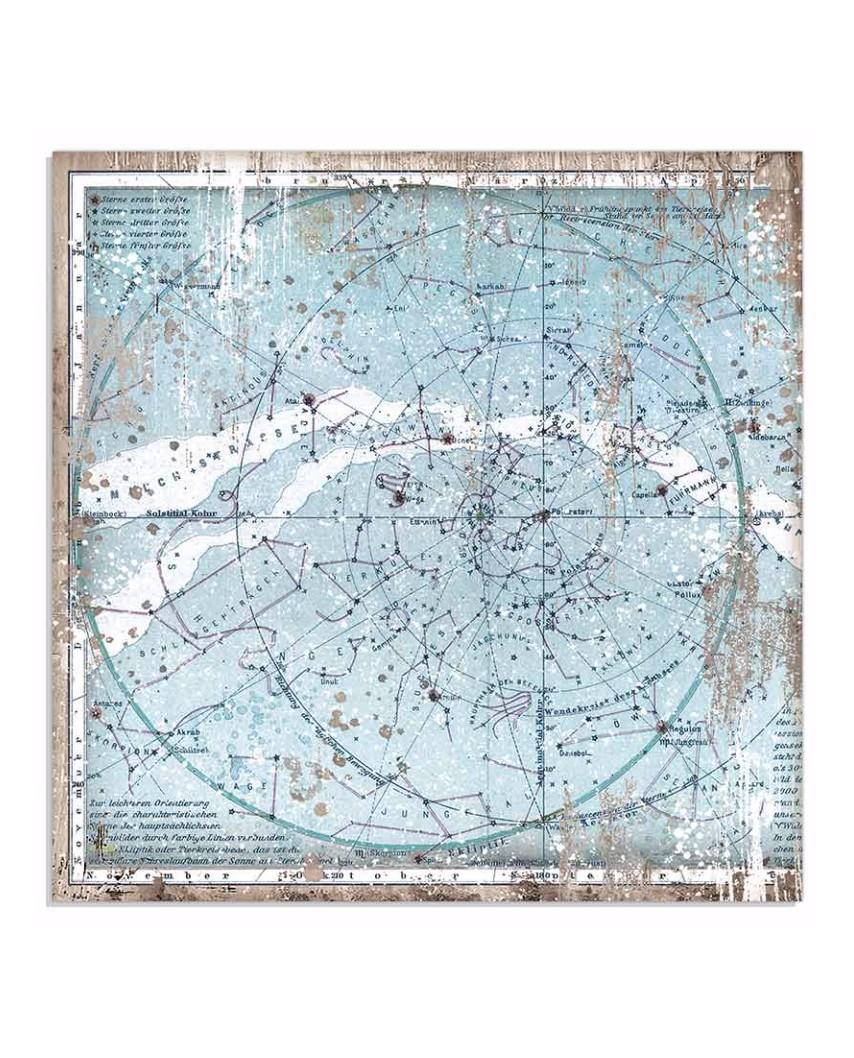 ARCTIC ANTARCTIC - Cristina Radovan
