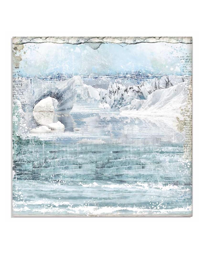 ARCTIC ANTARCTIC - Cristina Radovan 20x20